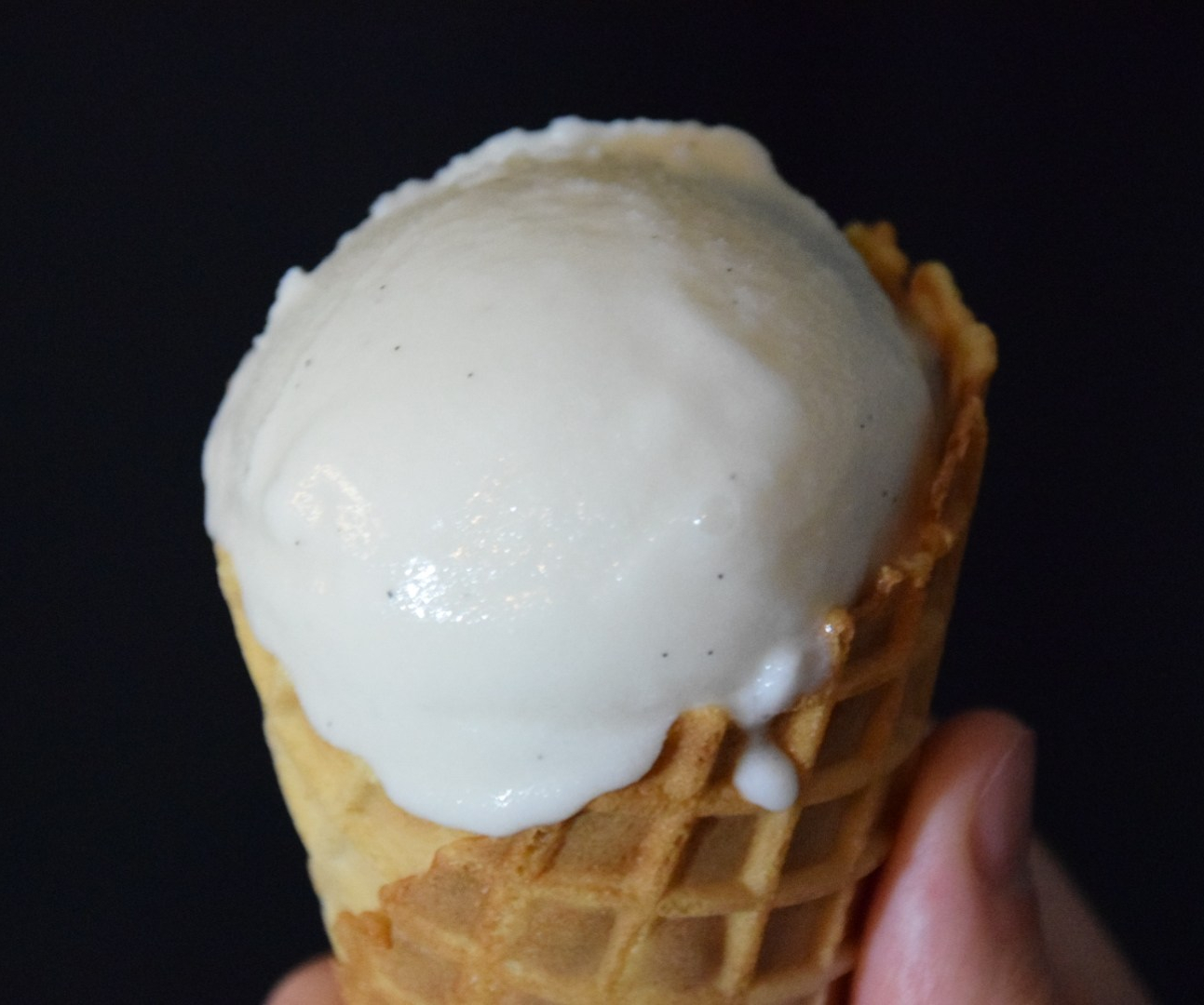stardew valley dairy free coconut vanilla ice cream