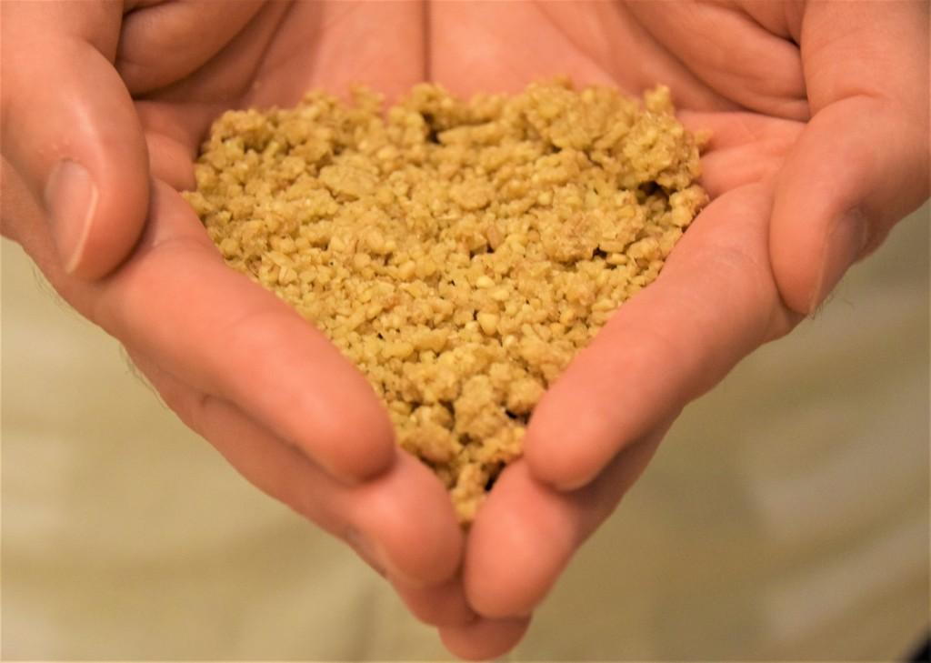 Open hands cradling golden granules of trahana pasta.